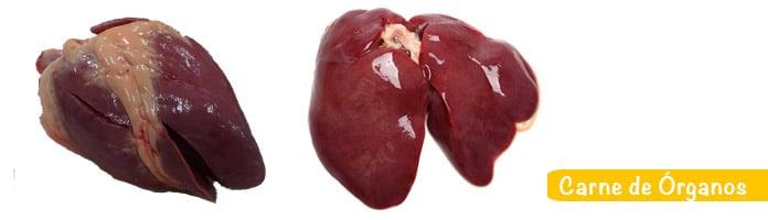 Comer Carne de órganos embarazo